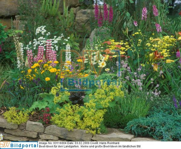 Details zu 0003116004 beet ideen f r landhausgarten for Beetideen garten