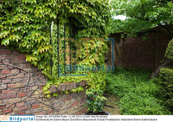 details zu 0003184995 sichtschutz im garten mauer durchblick mauerwerk schutz privatsph re. Black Bedroom Furniture Sets. Home Design Ideas