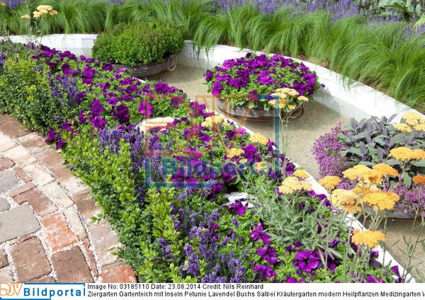 details zu 0003185110 ziergarten gartenteich mit inseln petunie lavendel buchs salbei. Black Bedroom Furniture Sets. Home Design Ideas