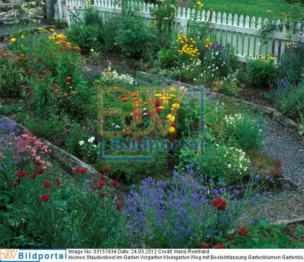 details zu 0003157834 kleines staudenbeet im garten vorgarten kleingarten weg mit. Black Bedroom Furniture Sets. Home Design Ideas